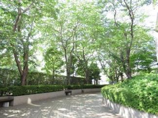 緑豊かな敷地内。木々のさざめきが心をほっとさせてくれます。
