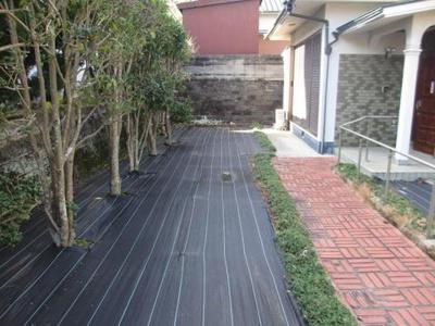 【庭】須波ハイツ3丁目 中古戸建