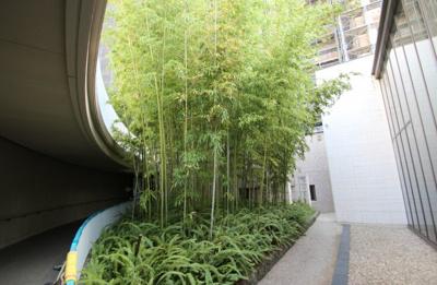 共用部回廊の植栽も綺麗にお手入れされています。