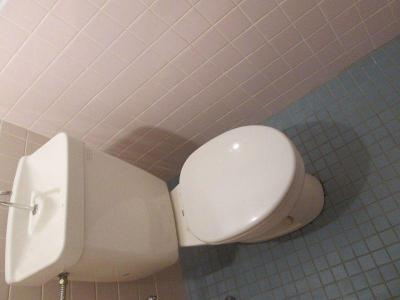 【トイレ】ワイズタウン 3棟