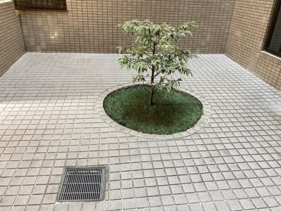 【庭】朝日プラザ本厚木