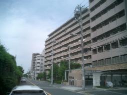 徒歩10分圏内に駅・コンビニ・スーパー・公園などが有る便利な立地のマンションです♪