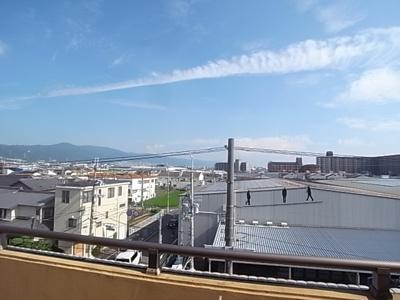 【展望】サンピカA
