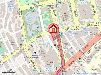 周辺には新宿中央公園や新宿都庁、様々なお店を利用できるパークタワー等があります。