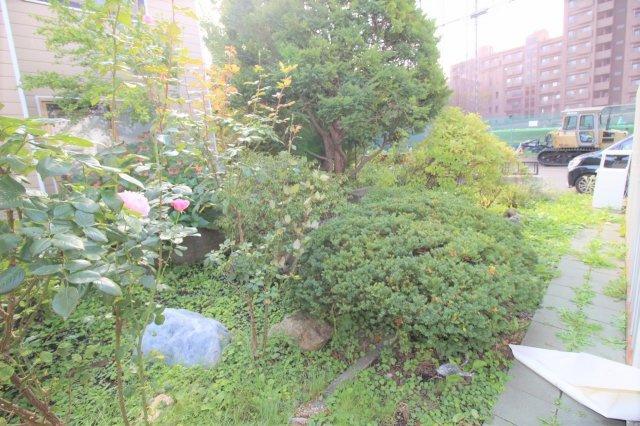 広々した敷地のお庭です。