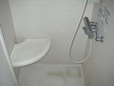 コンパクトで使いやすいシャワールームです