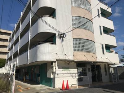 【外観】メゾン・エノシマ