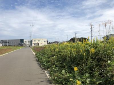【前面道路含む現地写真】つくば市流星台43