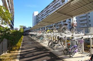 マンションの共有スペースには、テラスや池のあるお庭があります。緑豊かなマンションで心が癒されます。