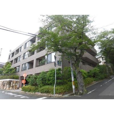 【外観】グランステイツ六甲・桜通