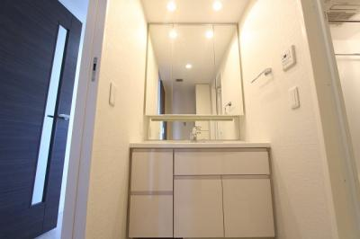 ゆったりとスペースのある洗面所 三郷新築ナビで検索
