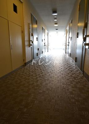 【玄関】ラグジュアリーアパートメント西新宿