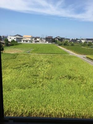 【収納】セジュールグリーンB