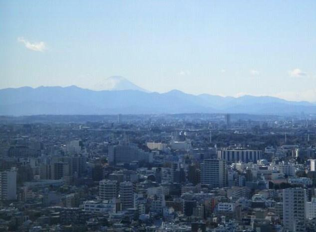 【展望】ザパークハウス西新宿タワー60