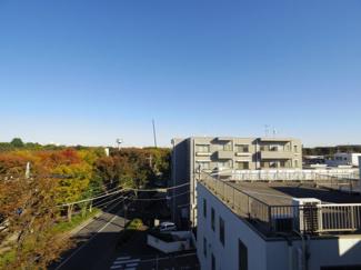 周囲の建物と緑の調和を楽しめる眺望が特徴です。