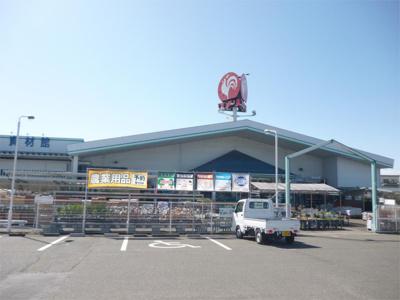 コメリハードアンドグリーン秦荘店(243m)