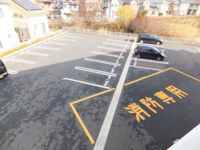 【駐車場】カモミール