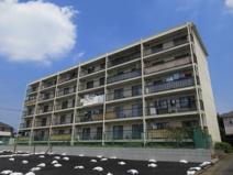 駒沢ビルの画像