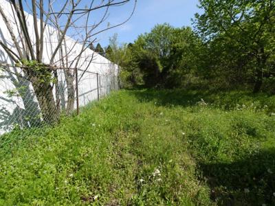 敷地約402坪  建築条件なし  北東道路に接道。舗装なし