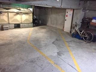 【駐車場】オオタニサンクレバー