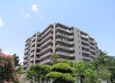 エステスクエア武蔵藤沢