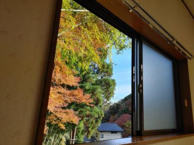 洋室の窓からは四季折々の木々が