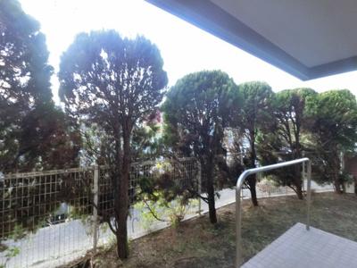 1階部分の為お庭が付いています。
