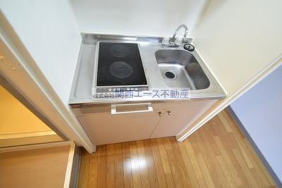 【キッチン】レオパレストミー