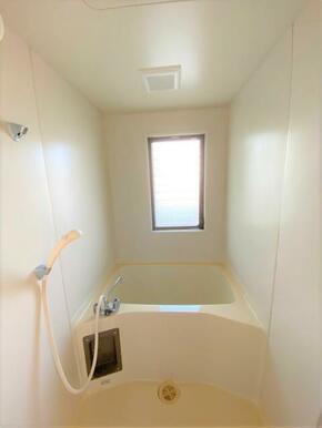 【浴室】ビル・トータス