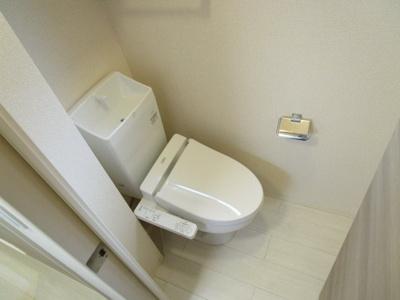 【トイレ】レイノー