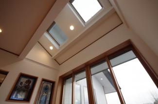 サンルーム天井