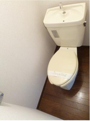【トイレ】ドルフィンハイム