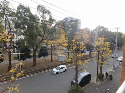 横浜大通り公園を臨め、開放感◎ 四季折々の季節を感じる事が出来ます。