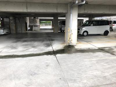 【駐車場】サンハイツ上沢Ⅱ