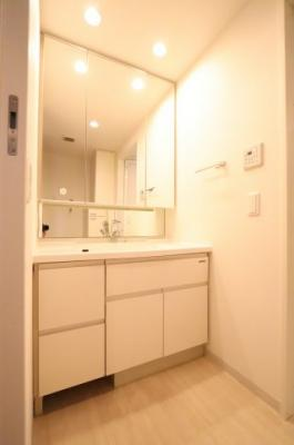 朝の支度にも助かる、独立の洗髪洗面化粧台 三郷新築ナビで検索