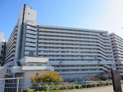 【外観】東白鬚第二マンション10号棟 13階 最 上階 リ ノベーション済