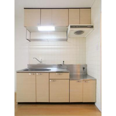 エクセレント浄水(1DK) キッチン