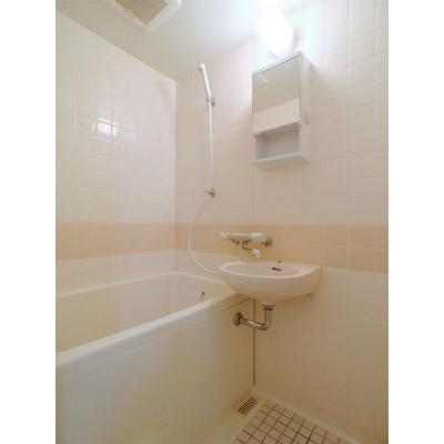 エクセレント浄水(1DK) 風呂