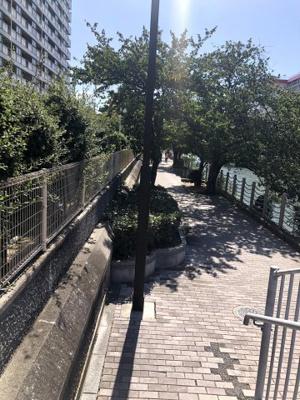 建物の裏には遊歩道があります。お散歩やサイクリングに最適です。