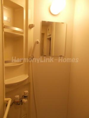 フェリスグラードの落ち着いた空間のシャワールームです