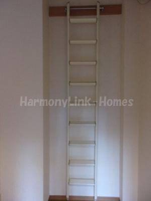 キャメル大島の梯子★