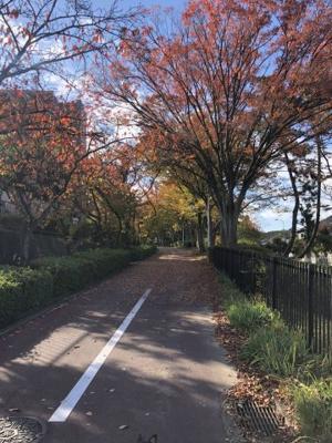 泉北高速鉄道『光明池』駅までバス10分♪四季折々の緑を楽しめる緑道もありウォーキングや子育てにぴったりな環境◎