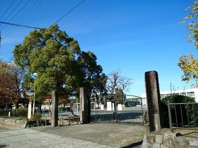 町立玉村小学校まで400m