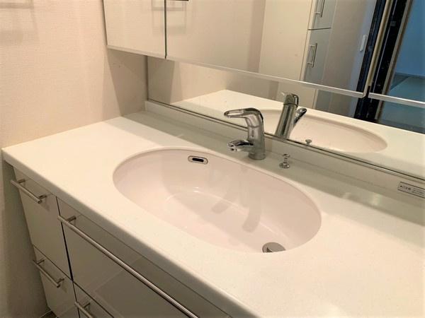 洗面台収納ほか、リネン庫もございます。