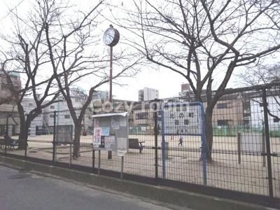 マンション横は、広めの公園です。