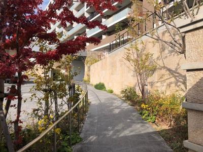 当マンションの入り口ゲートからエントランスにつながるアプローチ。四季を感じられる植栽が手入れされています。(エノキ、ヤマザクラ、アラカシ、ヤマモモ、ハウチワカエデ、センペルセコイア など)