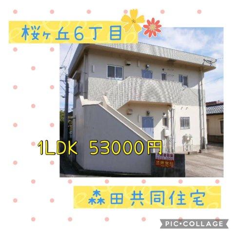 森田共同住宅の画像