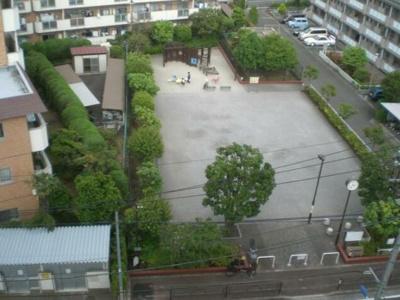 7階からの眺望です