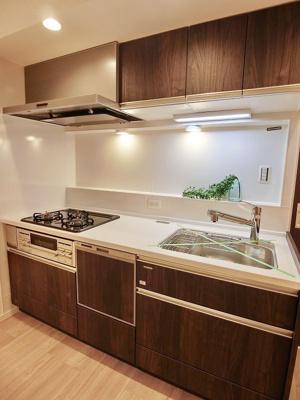 キッチンには食洗機と浄水器内蔵です。