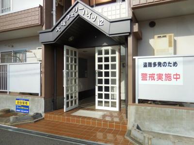 【エントランス】大塚チェリーハイツ12